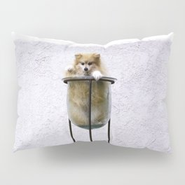 Potted Pommy Pillow Sham