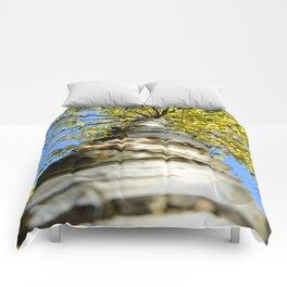 Running up the tree  Comforters