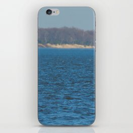 Warm enough for Leesylvania State Park! iPhone Skin