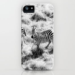 Zebra Print Texas Aerial Drone Shot Wild Animal Black and White Horse  iPhone Case