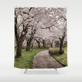 Row of cherry blossom trees Shower Curtain