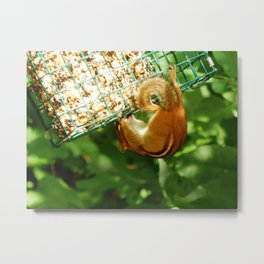 Whatever it takes Metal Print