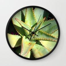 Agave I Wall Clock
