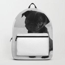 Pug Mitxiru Backpack
