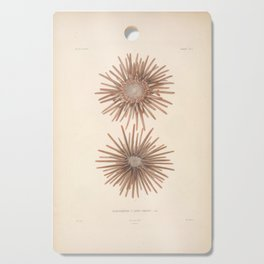 Naturalist Sea Urchins Cutting Board