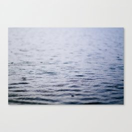 in the drizzle  Canvas Print
