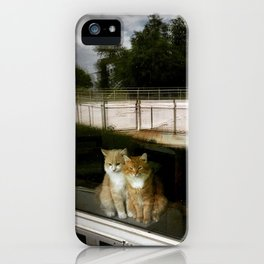 Motel Cats iPhone Case