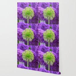 Violet green flower Wallpaper