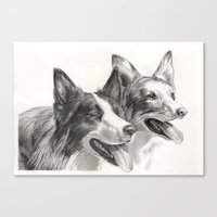 border collie Canvas Prints featuring Border Collie by Ruben Pino