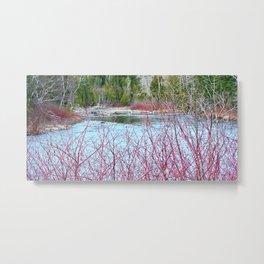 River of Trees Metal Print