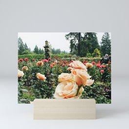 Couple at International Rose Test Garden Mini Art Print