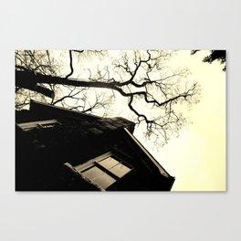 Formulate Canvas Print