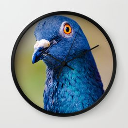 Portrait of a Happy Pigeon Photograph Wall Clock