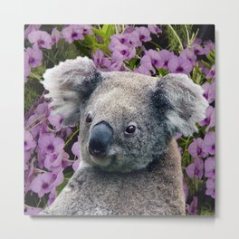 Koala and Coocktown Orchids Metal Print