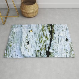 Weathered Barn Wall Wood Texture Rug