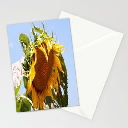 Bursting Sunflower Stationery Cards