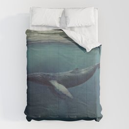 Old Sea and the Man Comforters