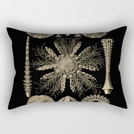 """""""Echinidea"""" from """"Art Forms of Nature"""" by Ernst Haeckel Rectangular Pillow"""