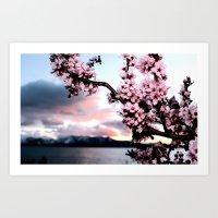 Cave Blossom. Art Print