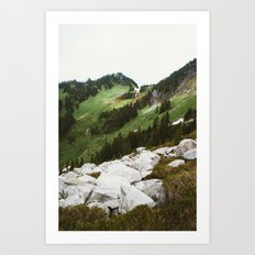 Alpine Meadow Slope Art Print