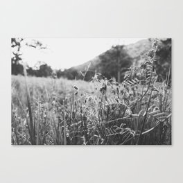 Hike more, worry less Canvas Print