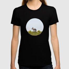 Bennett's wallaby (Macropus rufogriseus) T-shirt