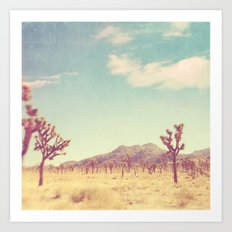 Joshua Tree photograph. desert print, No. 189 Art Print