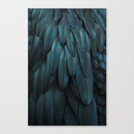 DARK FEATHERS Canvas Print
