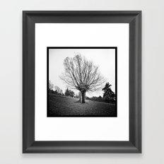 Cachette . . . Framed Art Print