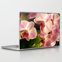 orchid Laptop & iPad Skins featuring orchid by Bitifoto