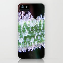 Ice cubes on green grass iPhone Case