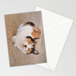 Inquisitive Stray Stationery Cards