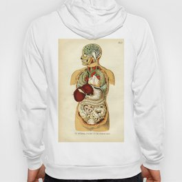 Internal organs of the Human Body Hoody