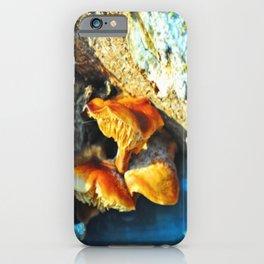 Mushrooms Hidden in a Tree iPhone Case
