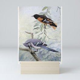 BALTIMORE ORIOLE SAMMY JAY8 Mini Art Print