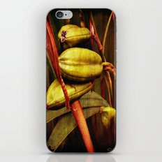 Hanging over the pond iPhone & iPod Skin