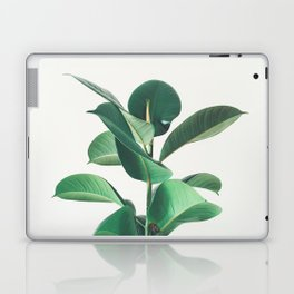 Rubber Fig Laptop & iPad Skin