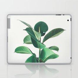 Rubber Fig Laptop & iPad Skin