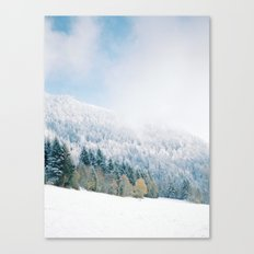 White Forest - French Alps Canvas Print