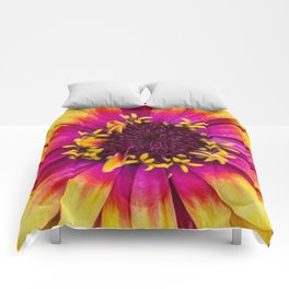 Blossom Forth Comforters