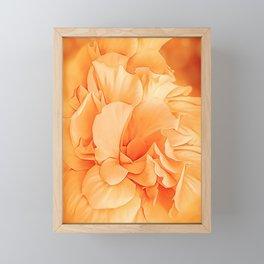 Hibiscus Rosa Double Petaled Yellow Framed Mini Art Print