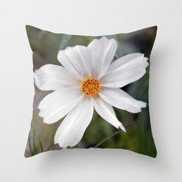 White Cosmos Throw Pillow