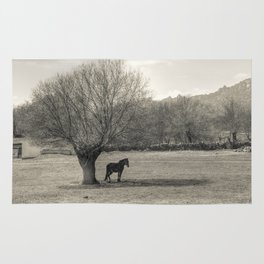 The horse and the tree Rug