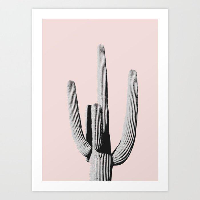Cactus under the sunlight Art Print