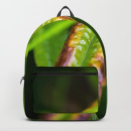 Colored grass Backpack