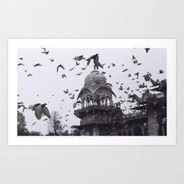 Freedom India Art Print