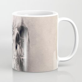 Decay Skull Light Coffee Mug