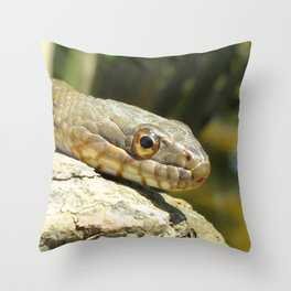 Watercolor Snake, Eastern Water Snake 06, Patuxent River, Maryland Throw Pillow