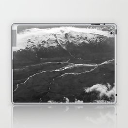 Glacier Buddies Laptop & iPad Skin