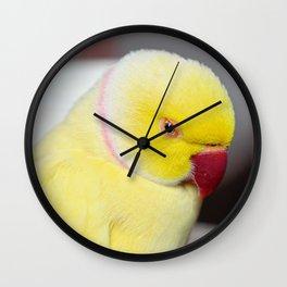 Bright and Sleepy Wall Clock
